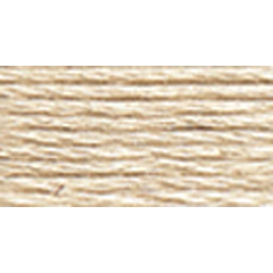 DMC 117-822 6 Strand Embroidery Cotton Floss, Light Beige Grey, 8.7-Yard