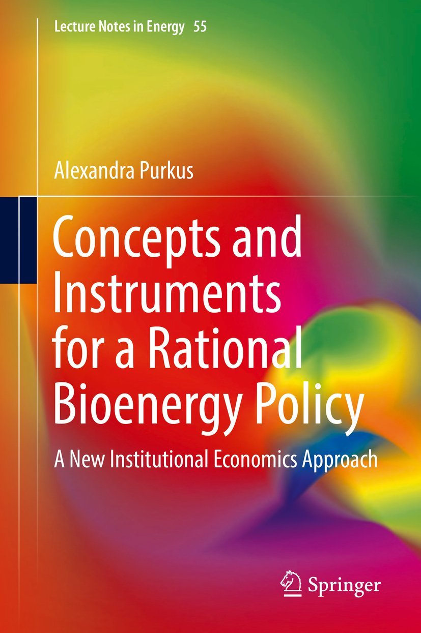Concepts and Instruments for a Rational Bioenergy Policy: A New Institutional Economics Approach (Lecture Notes in Energy Book 55)