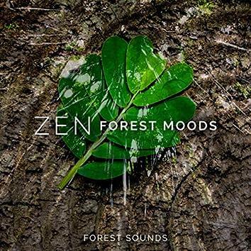 Zen Forest Moods