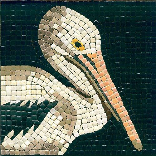 Kit Mosaico fai da te, 15x15cm, pellicano