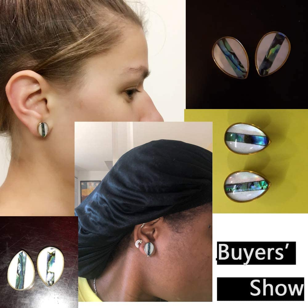 Casvort 2 PCS New Arrival Hot Ear Plugs Tunnels Helix Piercing Jewelry Shell Conch Ear Gauges Expander Stretchers Pair Selling Gauges for Ears