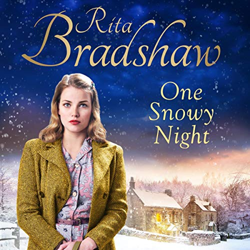 Couverture de One Snowy Night