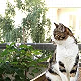Bingoo Red de seguridad transparente antiescape para gatos, valla de seguridad para balcón, ventana, balcón, terraza, red de protección para gatos con juego de fijación