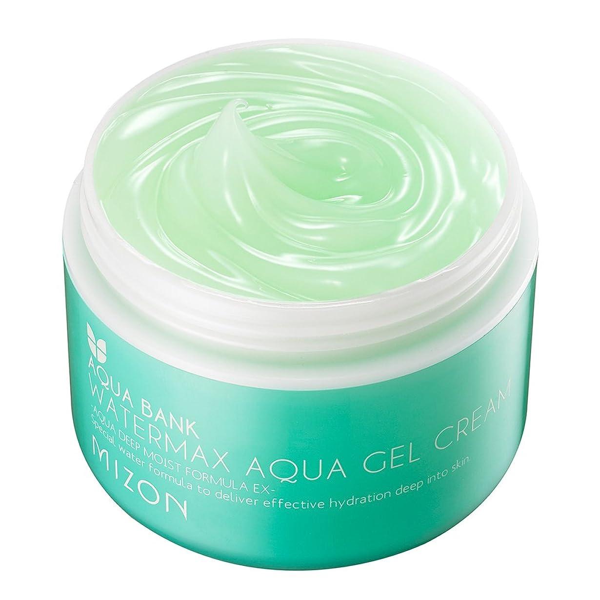 島ハードウェア対象MIZONミズオン Water Max Aqua Gel Cream 125ml アクアジェルクリーム [韓国直送品]