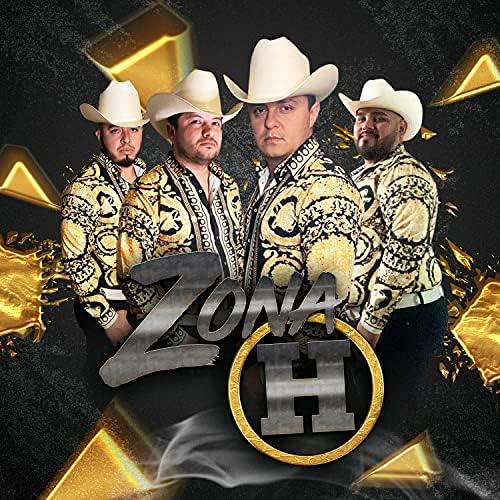 Zona H