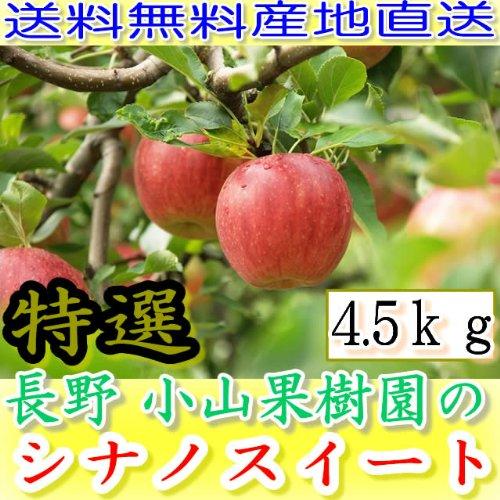 減農薬 シナノスイート りんご A品 約4.5kg 8〜25個入 長野産リンゴ 林檎 産地直送 小山 NG 10g