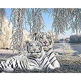 XCxCN 5D-DIY-Diamante Pintura Diamante Redondo Dos Tigre Blanco Diamante Infantil Pintura Diamantes de imitación Bordado artesanías para el hogar decoración de la Pared sin marco-40x50cm