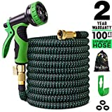 Greness 100 FT 100 ft Expandable, Lightweight Garden Water Hose with 3/4 i, 100 FT, Black&Green