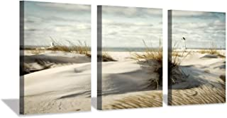 Best painting grass and sky on wall Reviews