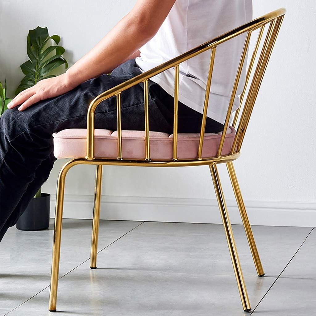 SLL- Chaise de Salle, Chaise de Bureau Simple, créative Dossier, Chaise Loisirs, Maison Adulte Chaise de Salle Moderne (Color : Green) Pink