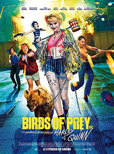 Birds of Prey et la fantabuleuse Histoire de Harley Quinn [Blu-Ray]