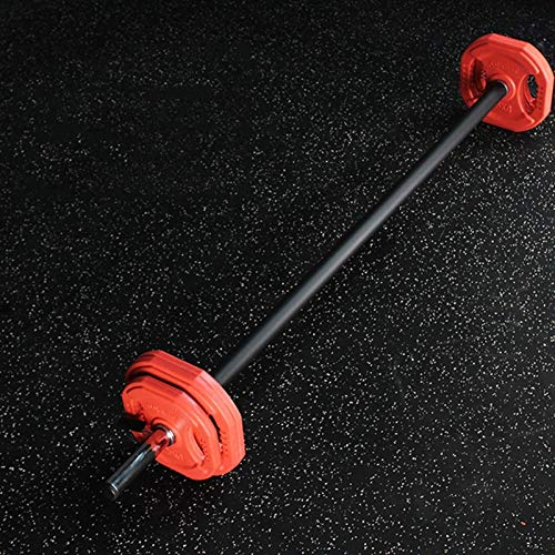 Ownlife 10KG/20KG Standard Rubber Pink Barbell Set, Barbell Kit for Aerobic Weights Exercise, Home Gym Fitness Bar (Size : 10kg)