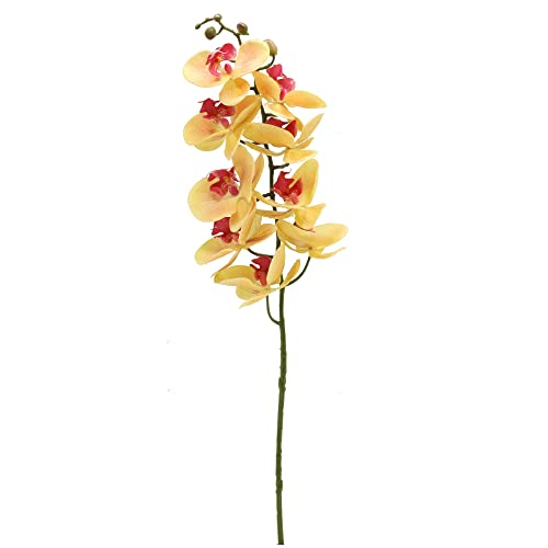 Xilyya 2PCS Real Touch Artificial Phalaenopsis Orchids Spray Silk Wedding Flowers Faux Orchids Stems Home Wedding Table Decor White
