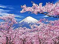 5D DIY ダイヤモンド塗装キット、フルダイヤモンドラウンドラインストーン刺繍アートワーク、家の装飾、桜と雪の山の風景 30x40cm
