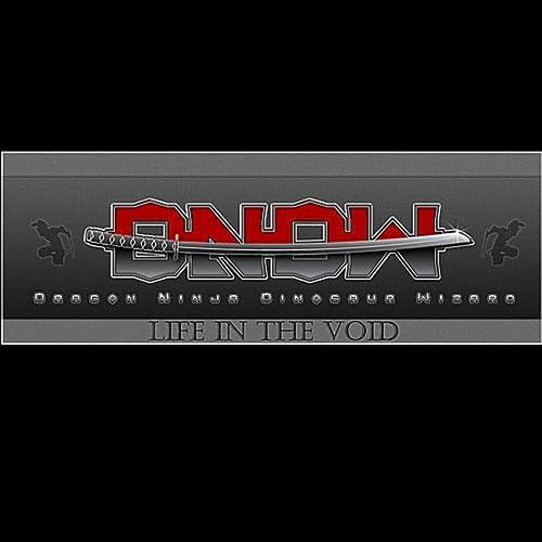 Life in the Void de Dragon Ninja Dinosaur Wizard en Amazon ...