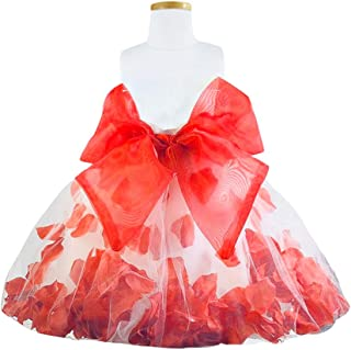 Blue Sky Kids Girl's and Baby Satin Flower Girl Red Petal Dress (3 Months to 16 Years)