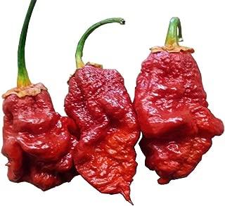 bleeding borg 9 pepper
