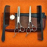 Jsx 6 Pulgadas de Acero Inoxidable Tijeras de Pelo Peluquero peluquería Tijeras de Corte para la Mano Izquierda Plana Tijera + + Peine de Dientes de cizalla + una Bolsa de Cuero Set (Color: Plata)