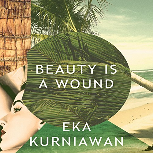 Beauty Is a Wound audiobook cover art