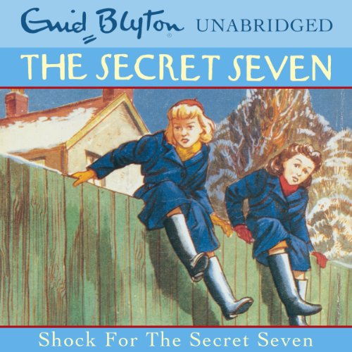 Shock for the Secret Seven cover art