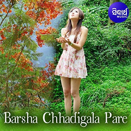 Baidyanath Dash