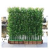 ADosdnn Las Plantas Artificiales 100/150 / 180cm Falsos Planta de bambú ajardinar del Hotel Decoración de Interior Plantas de Faux Plantas Bonsai (Color : 10pcs 180cm no Pot)