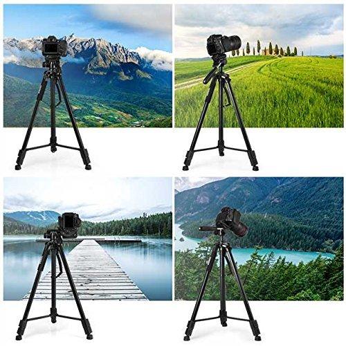 ESDDI 170cm/67inches Kamera Stativ Aluminiumlegierung Stativ Kompakt Leichtes Stativ für Smartphone DSLR SLR Canon Nikon Sony Olympus mit Handy Halterung Tragetasche