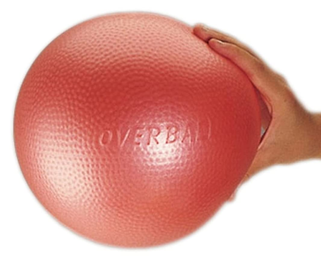 Gymnic Ledraplastic 8011 Over Ball - 10 Inch - Colors May Vary