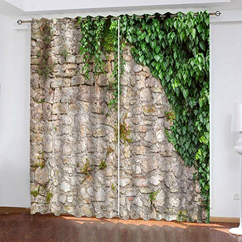 MENGBB Blackout Curtain for Kids Girls Microfiber 63x71 inch Green plants by the wall Thermal Insulated 95% Blackout Kitchen Bedroom Living Room Window Eyelet Curtains