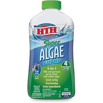 HTH 67032 Super Algae Guard Swimming Pool Algaecide Cleanser, 1 qt, Clear