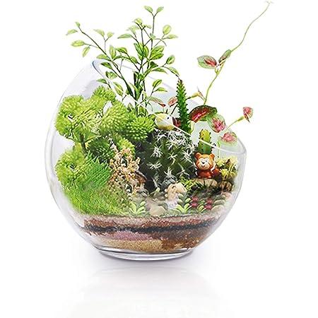 Soporte de cristal grande para plantas de aire de terrario, 17,78 x 17,8 cm, gran apertura de cristal, mini cuenco para decoración de jardín