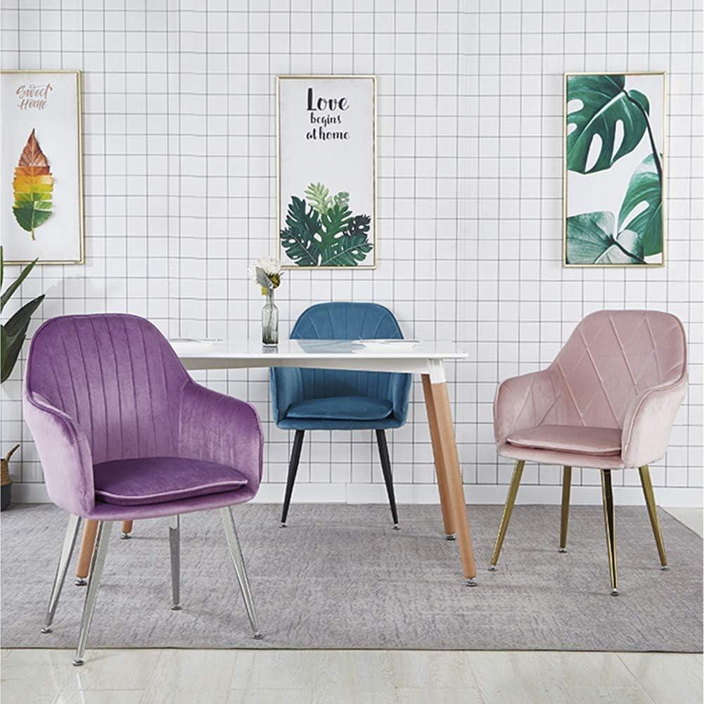 ZDY Chaises Dinning Simples de Style Simple, Jambes en métal, chaises élégantes de Haut Dossier avec Bras dans la pièce de Vie Titanium Brushed Gray Blue