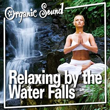 Relaxing by the Water Falls (Nature Sound)