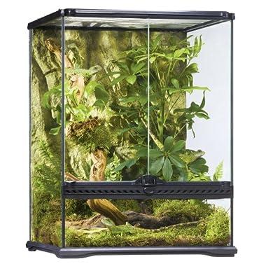 Exo Terra Glass Terrarium, 18 18 24-Inch