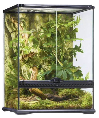 Exo Terra Glass Natural Terrarium Kit, for Reptiles and Amphibians, Small Tall, 18 x 18 x 24 inches,...