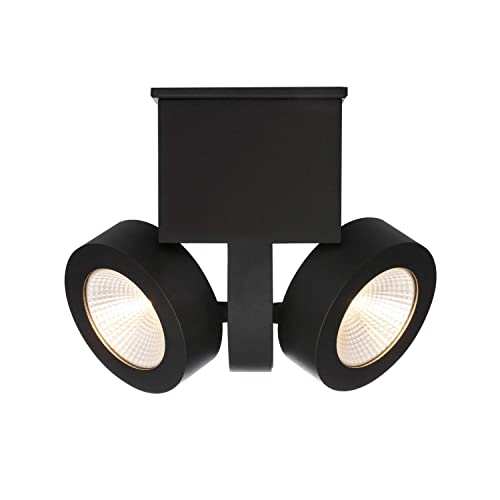 RUNNLY Modern Ceiling Light Flush Mount Track Spot Lighting with Cree Chip 2x10W, Directional for