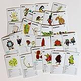 Todo vegano: el juego de cartas de Quartet para veganos y vegetarianos.