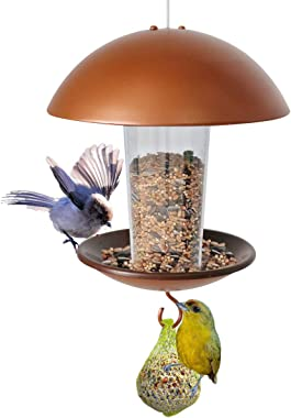LIMEIDE Wild Bird Feeder Hanging for Garden Yard Outside Hang on Tree, Poles in Backyard Garden, Patio,Gift idea for Parents(Hang Round)