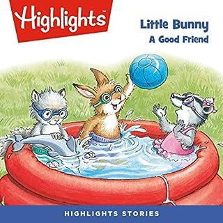 Little Bunny: A Good Friend audiobook cover art
