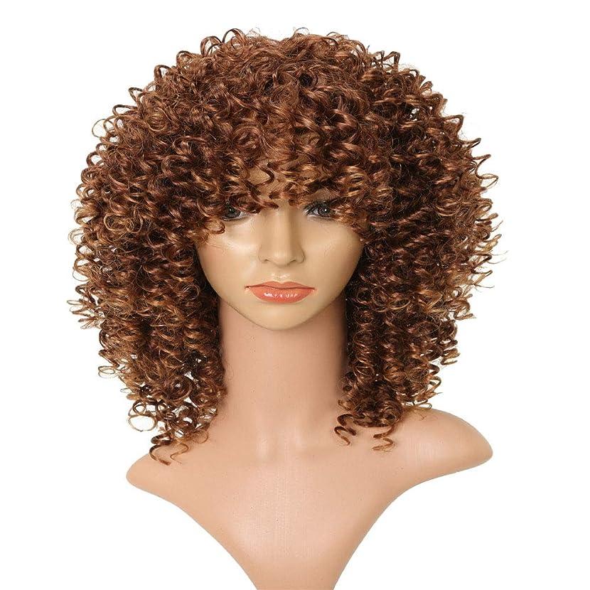 色合い亜熱帯安定しましたフェザーエクステンションブラウン女性用カーリーキンキーオンブルブロンドネイチャーブラウンアフリカ合成かつら高温シルク繊維フード16インチ
