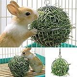 Huhuswwbin - Juguetes para Masticar con Forma de Conejo Hueco, Acero Inoxidable, dispensador de Comida para Mascotas, Juguete con Gancho de Cadena, Color Plateado