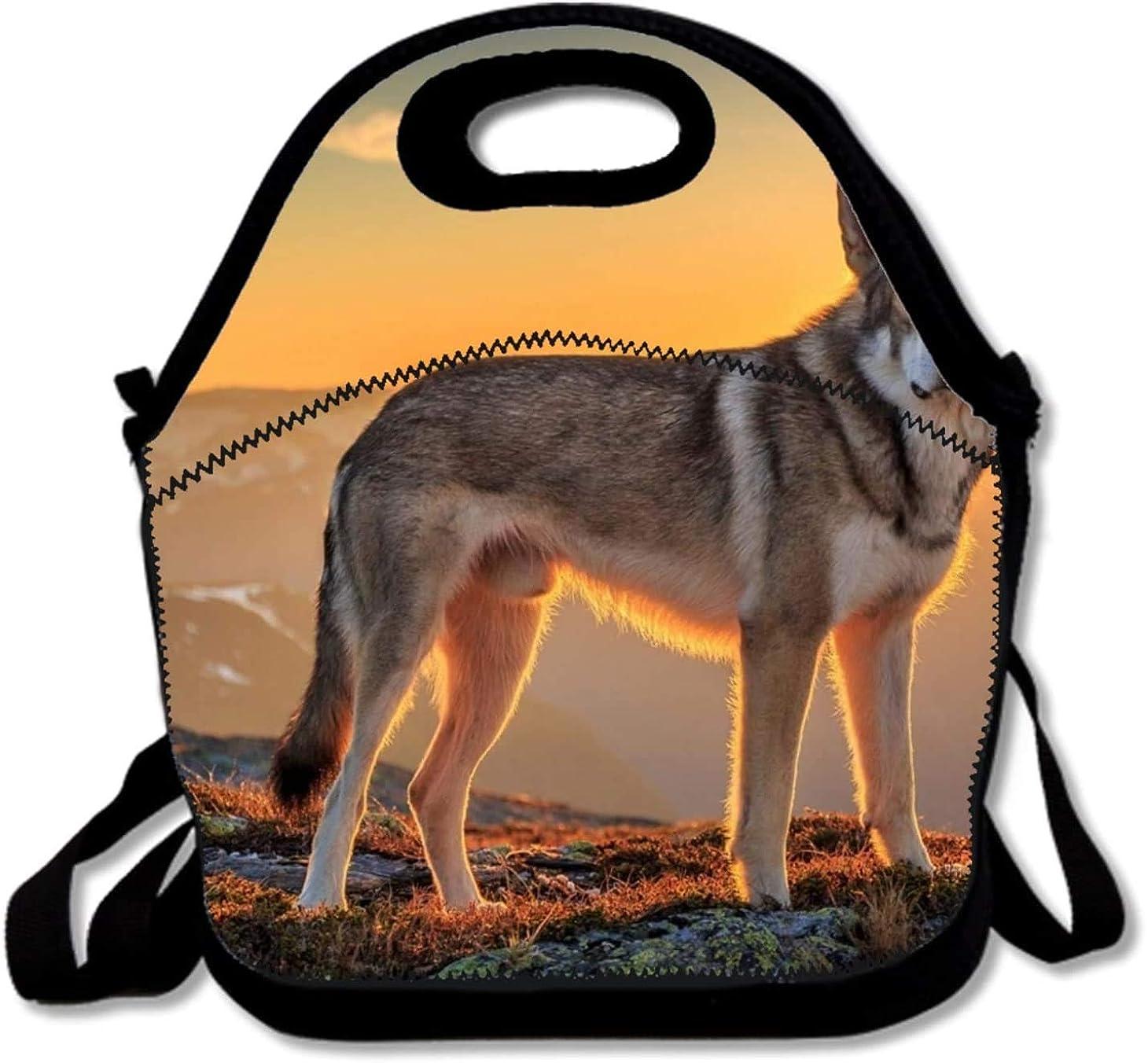 なんとなくぬるい質素な動物野生生物ウルフ 断熱ランチバッグ ランチトートバッグ 旅行 学校 ピクニック ランチボックス メンズ&レディース&キッズ用