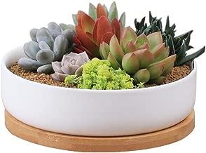 STAR-TOP Succulent Planter Pot,Small Modern Decorative Ceramic Cement Flower Plant Pot with Drainage - Home Office Desk Garden Mini Cactus Pot Indoor Decoration (Shallow Flowerpot)