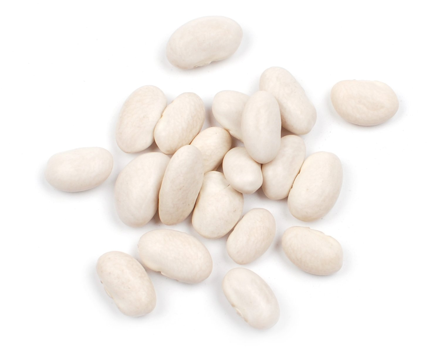 Great New product!! Northern Max 73% OFF Beans Box 25 Pound