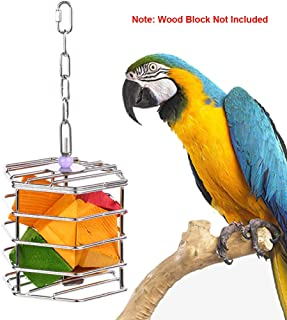 foraging toys for african grey parrots