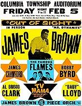 James Brown - Columbia Township Auditorium - 1965 - Concert Poster