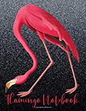 Flamingo Notebook: Cute Pink Flamingo Journal, Notebook, Sketchbook or Diary 6 x 9 With Lined Pages