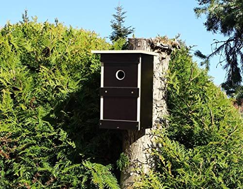Jagdfallen Steingraf 2x/4x Premium Nistkasten Meisen Vogelhaus Nisthaus Nisthöhle Einflugloch 30mm (1 Stück, Braun)