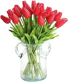 50 Red Oxford Tulip Bulbs - Tulipa Darwin Hybrid: Super-Sized X-tra Value Bag!!