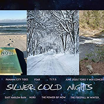 Silver Cold Nights